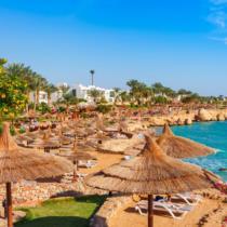 «ТОП-лист Египта. Лучшее в сезоне Лето 2021»: стартует новый обучающий проект от PAC GROUP