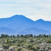 Штат Невада. Пейзаж с видом на горы