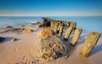 Светлогорск (Калининградская область). Деревянный волнорез на пляже