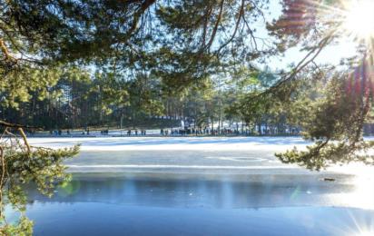 Златибор. Зимний пейзаж