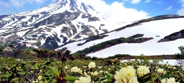 Авачинский вулкан. Лето