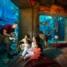 ATLANTIS THE PALM, DUBAI. The Lost Chambers Aquarium