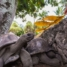 Сейшелы. Национальный парк на острове Ла-Диг